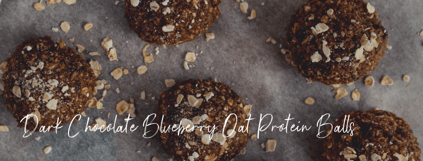 dark chocolate blueberry oat protein bar banner